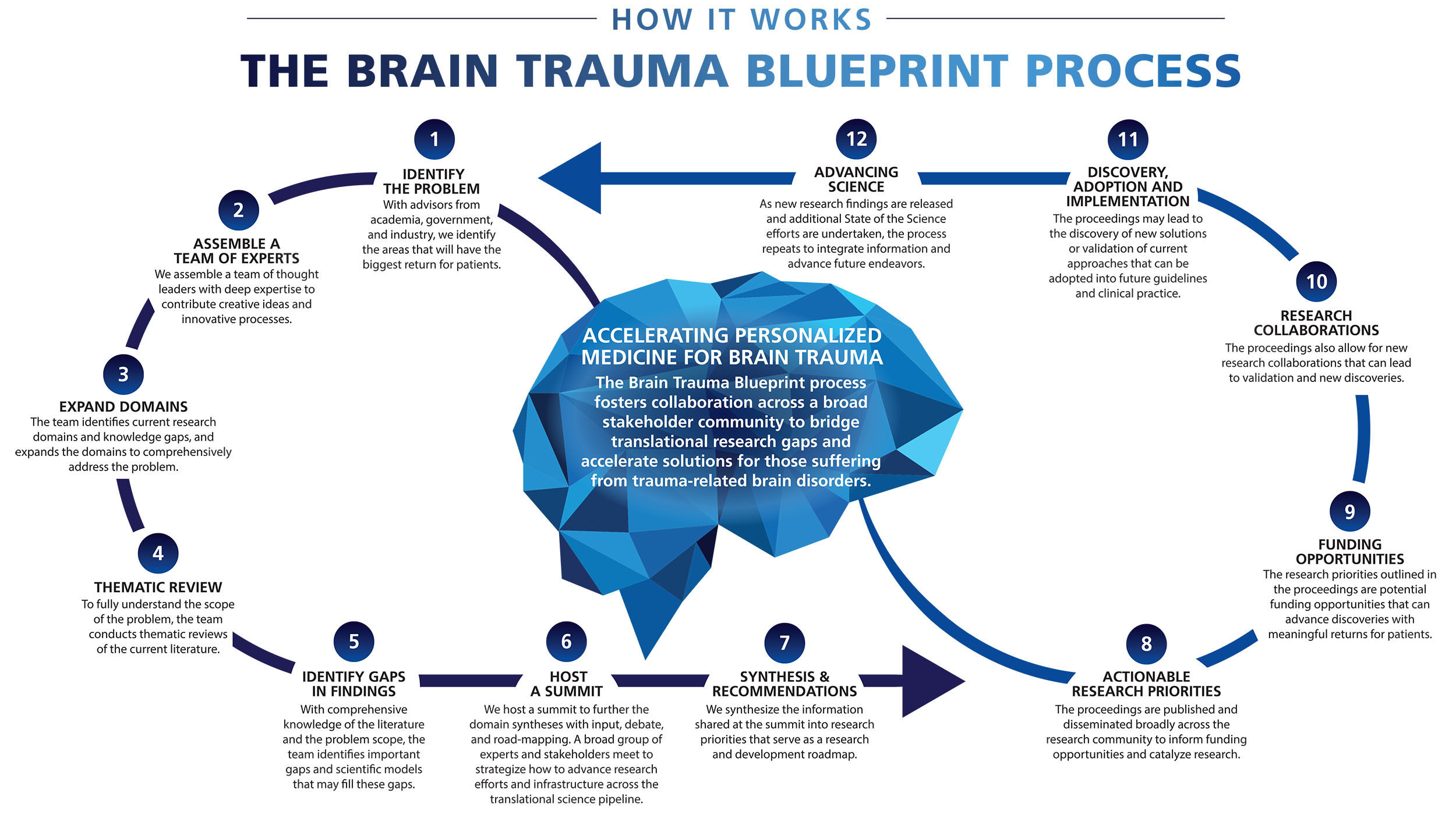 The Brain Trauma Blueprint Process
